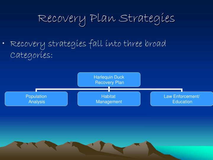 Recovery strategies fall into three broad Categories: