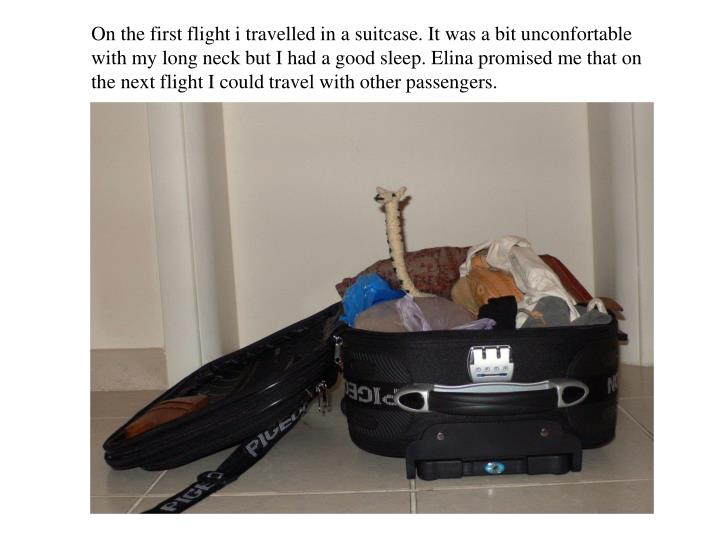 On the first flight i travelled in a suitcase. It was a bit unconfortable with my long neck but I had a good sleep. Elina promised me that on the next flight I could travel with other passengers.