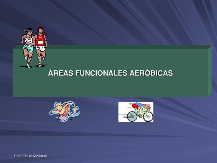 ÁREAS FUNCIONALES AERÓBICAS