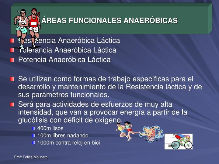 ÁREAS FUNCIONALES ANAERÓBICAS