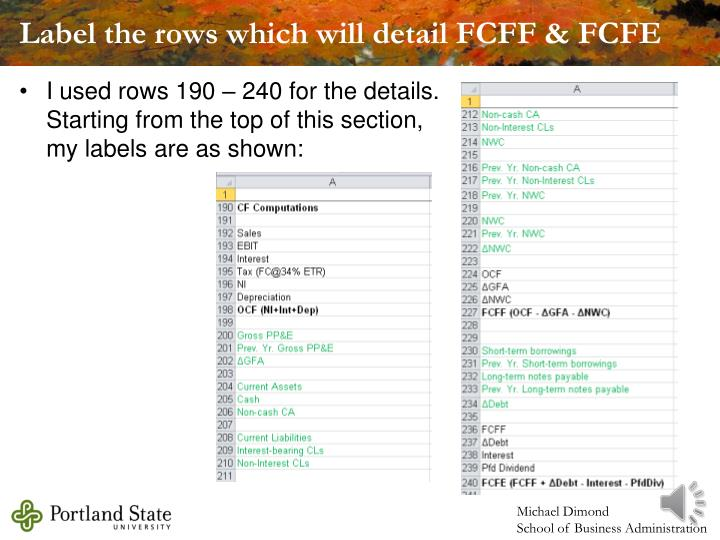Label the rows which will detail FCFF & FCFE