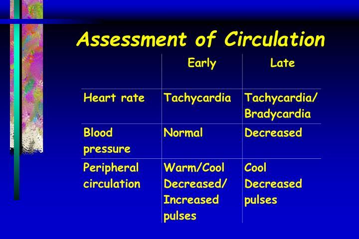 Assessment of Circulation