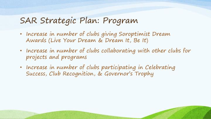 SAR Strategic Plan: Program