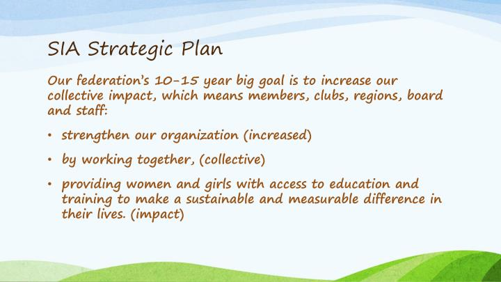 SIA Strategic Plan