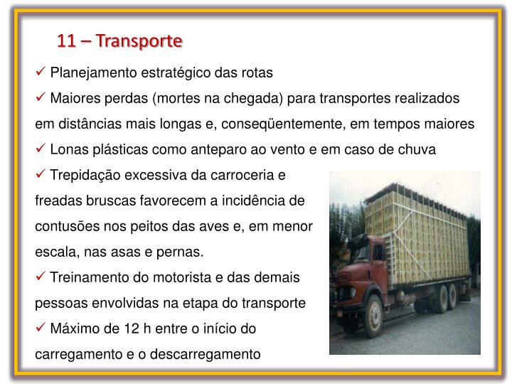 11 – Transporte