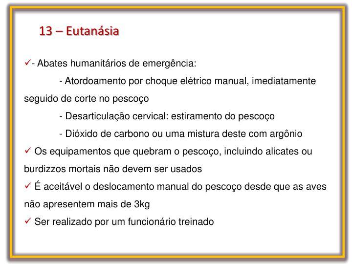 13 – Eutanásia