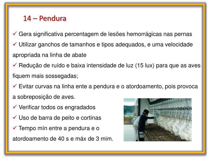 14 – Pendura