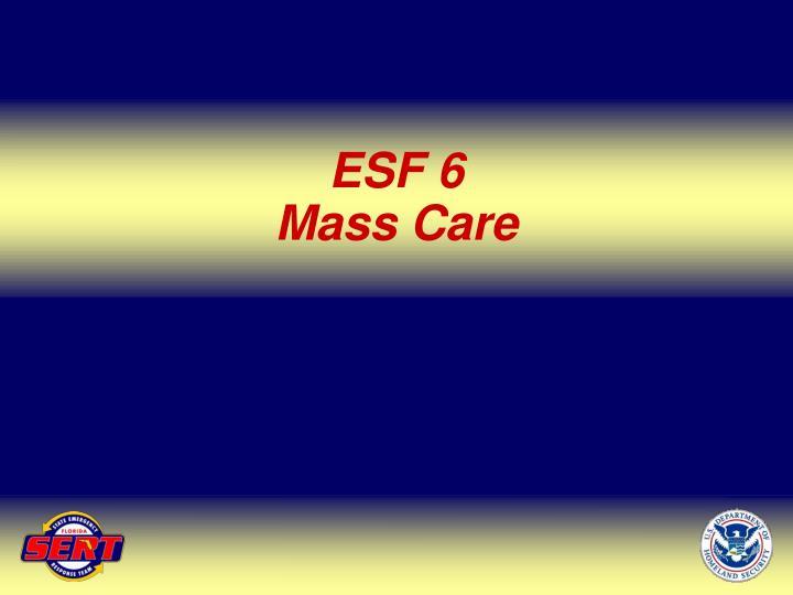 ESF 6