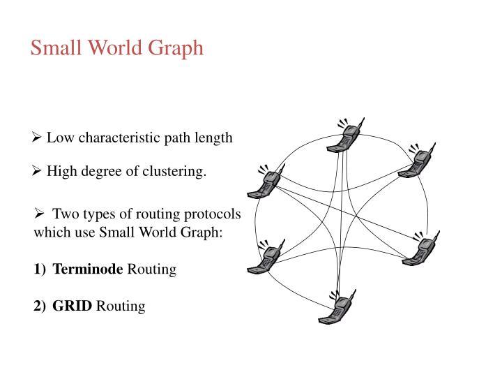 Small World Graph