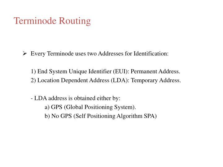 Terminode Routing
