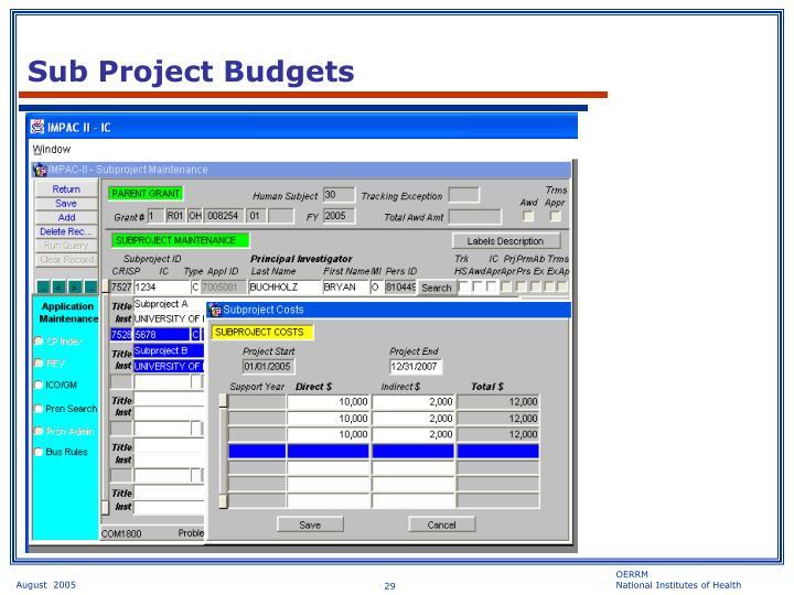 Sub Project Budgets