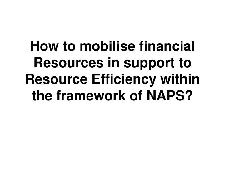 How to mobilise financial Resources in support to Resource Efficiency within the framework of NAPS?