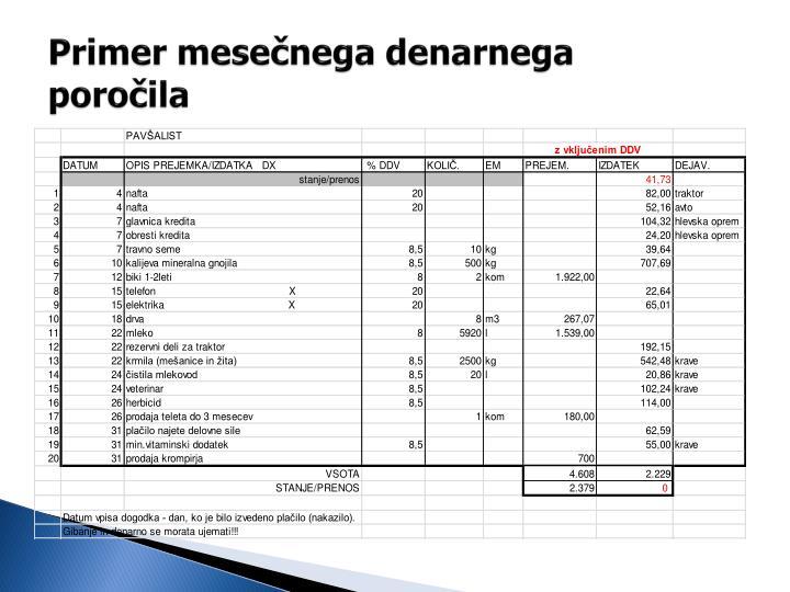 Primer mesečnega denarnega poročila