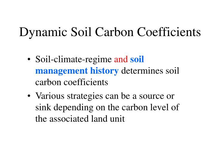 Dynamic Soil Carbon Coefficients