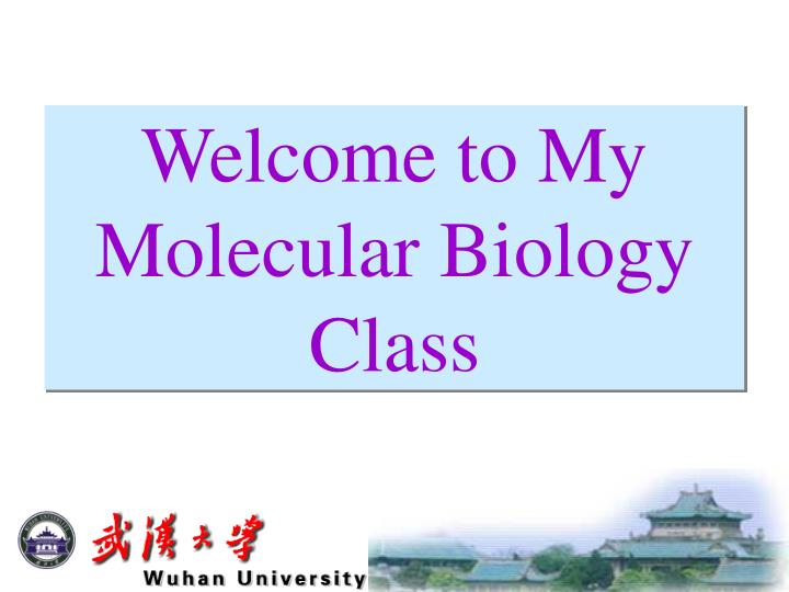 welcome to my molecular biology class n.