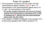 proton h gradient