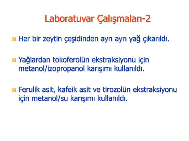 Laboratuvar Çalışmaları-2
