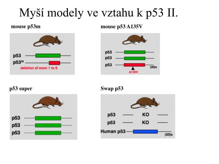 Myší modely ve vztahu k p53 II.