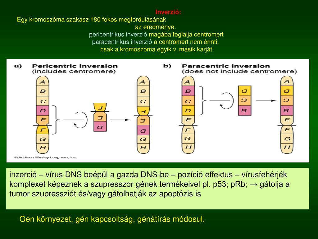 családi rákdaganat szupresszor gének)