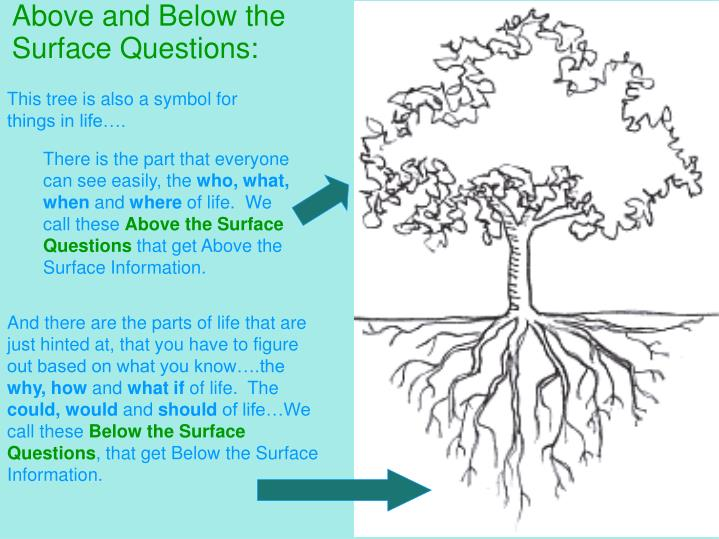 Above and Below the Surface Questions: