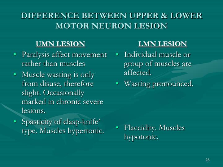 difference between upper lower motor neuron lesion. UMN LESION