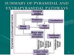 summary of pyramidal and extrapyramidal pathways