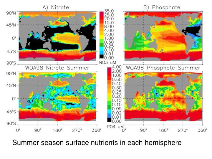 Summer season surface nutrients in each hemisphere