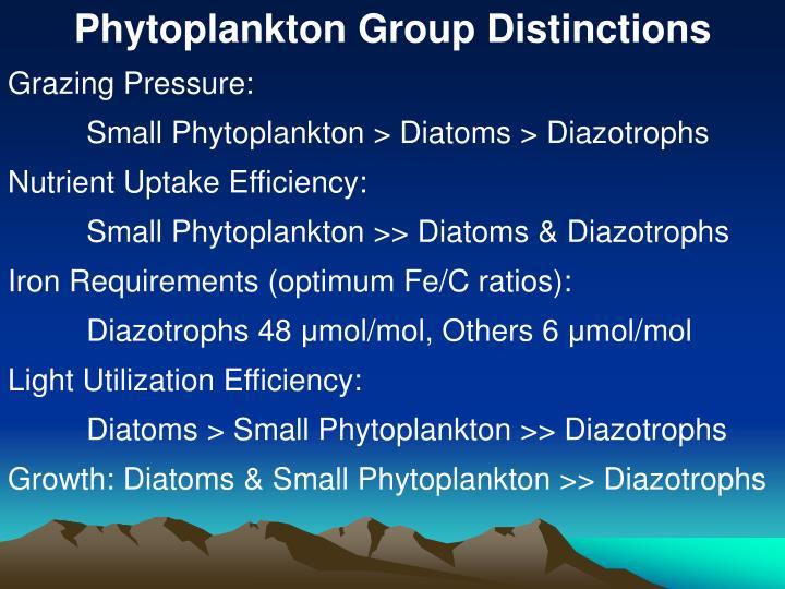 Phytoplankton Group Distinctions