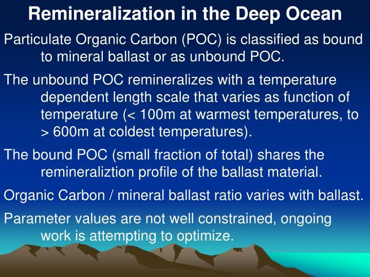 Remineralization in the Deep Ocean