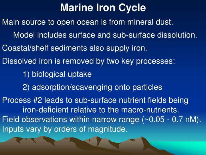Marine Iron Cycle