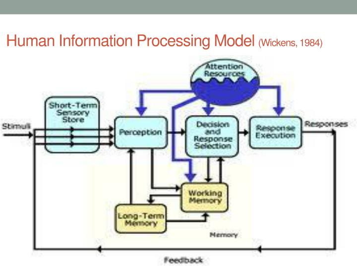 evaluate the information processing models to learning distingush the main features of the multi sto The third reason for behaviorism's appeal, popular at least historically, is related to its disdain for reference to inner mental or information processing as explanatory causes of behavior the disdain is most vigorously exemplified in the work of skinner.