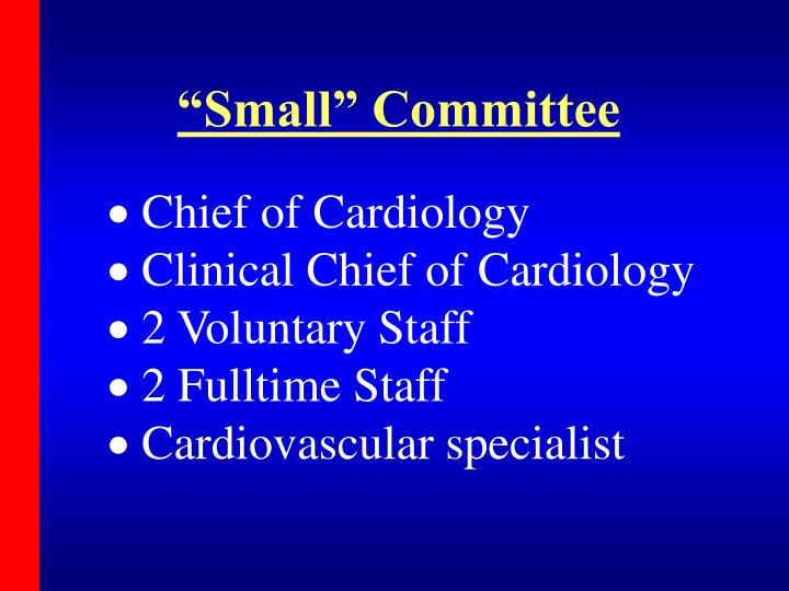 """""""Small"""" Committee"""