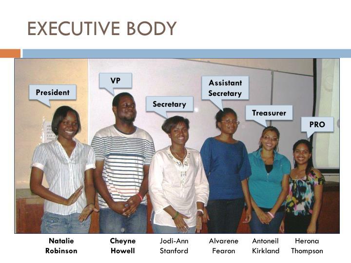 Executive body
