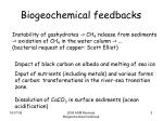 biogeochemical feedbacks1