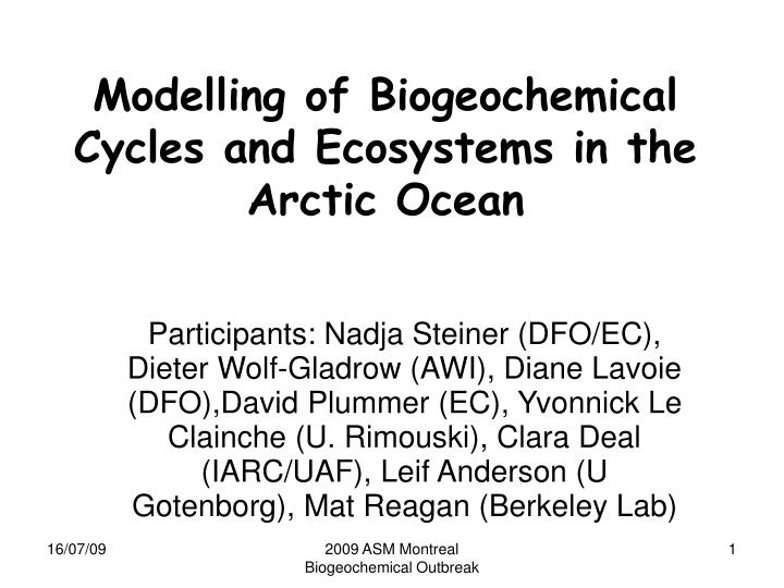 modelling of biogeochemical cycles and ecosystems in the arctic ocean n.