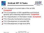 gridlab wp 10 tasks