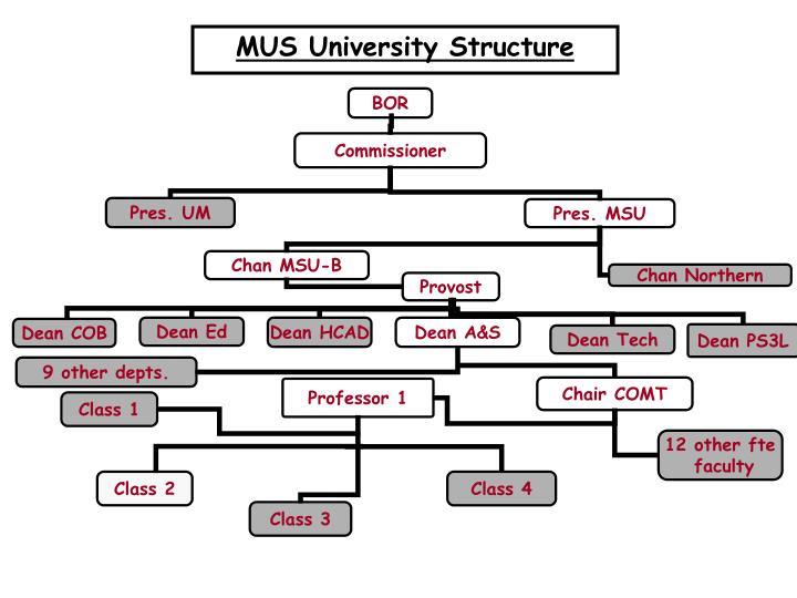 MUS University Structure
