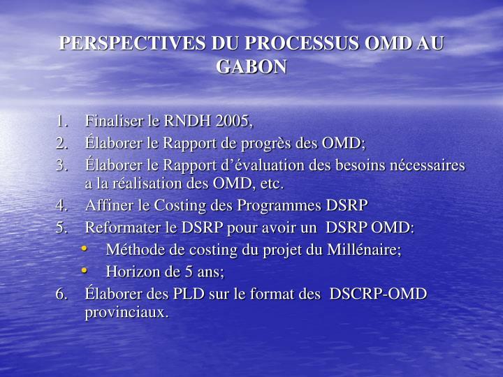 PERSPECTIVES DU PROCESSUS OMD AU GABON