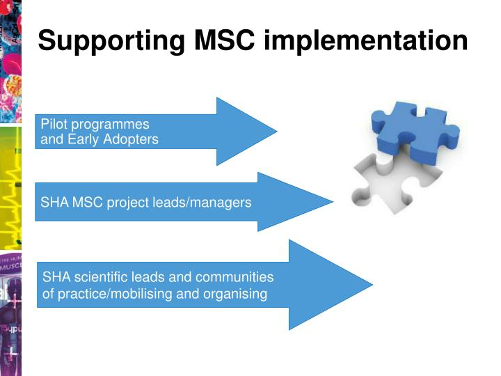 Supporting MSC implementation