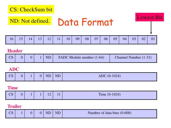 CS: CheckSum bit