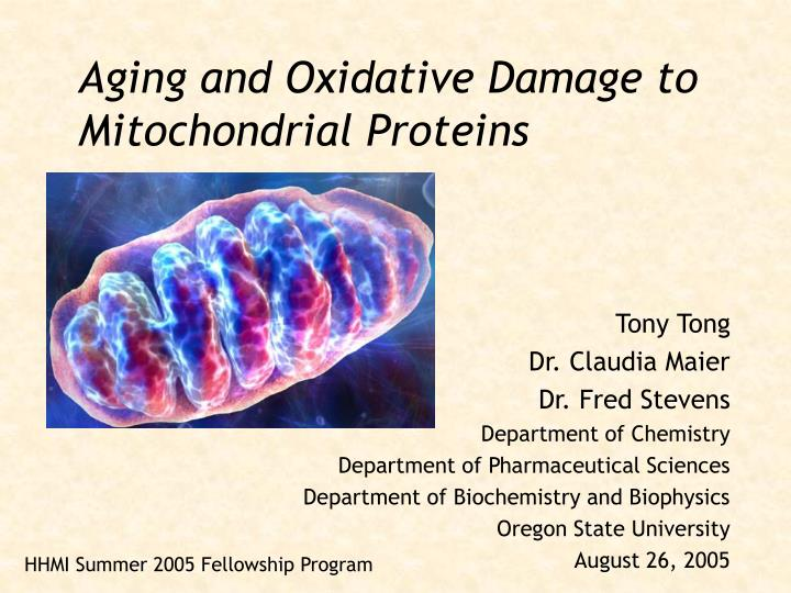 Aging and oxidative damage to mitochondrial proteins