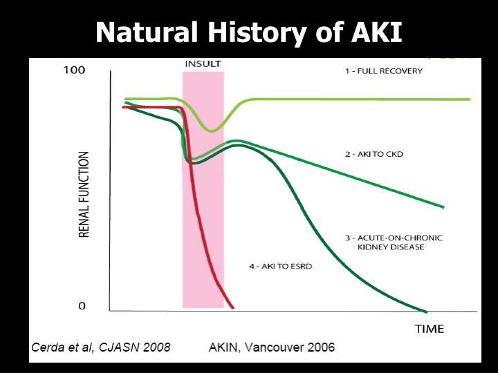 Natural History of AKI