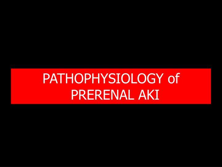 PATHOPHYSIOLOGY of PRERENAL AKI
