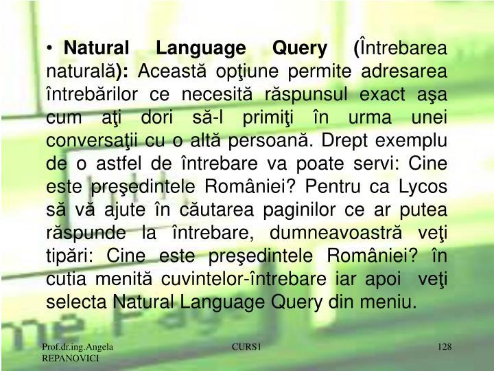 Natural Language Query (