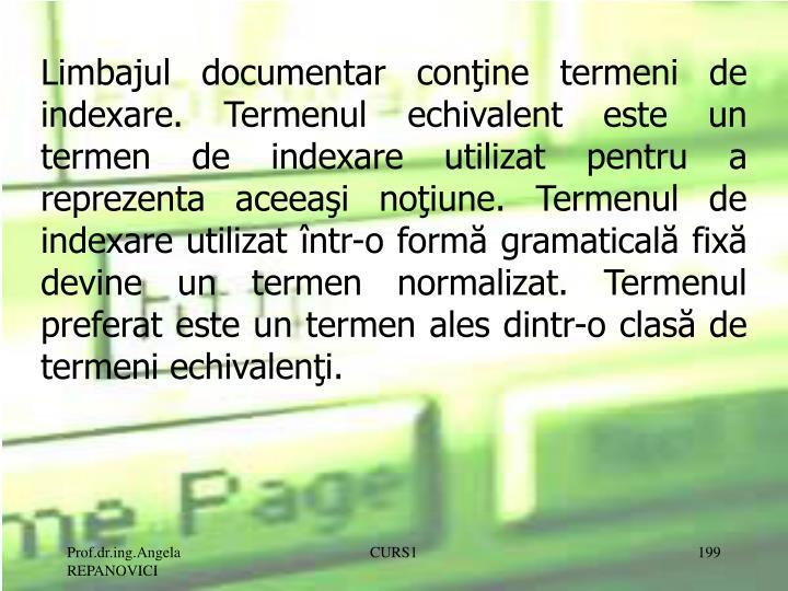 Limbajul documentar conţine termeni de indexare. Termenul echivalent este un termen de indexare utilizat pentru a reprezenta aceeaşi noţiune. Termenul de indexare utilizat într-o formă gramaticală fixă devine un termen normalizat. Termenul preferat este un termen ales dintr-o clasă de termeni echivalenţi.