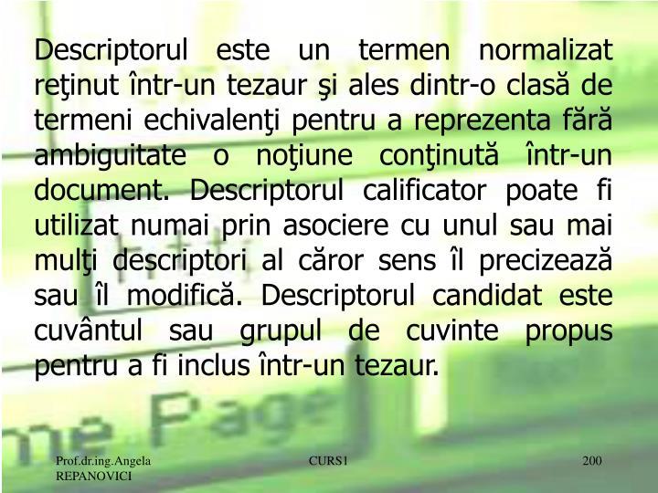 Descriptorul este un termen normalizat reţinut într-un tezaur şi ales dintr-o clasă de termeni echivalenţi pentru a reprezenta fără ambiguitate o noţiune conţinută într-un document. Descriptorul calificator poate fi utilizat numai prin asociere cu unul sau mai mulţi descriptori al căror sens îl precizează sau îl modifică. Descriptorul candidat este cuvântul sau grupul de cuvinte propus pentru a fi inclus într-un tezaur.