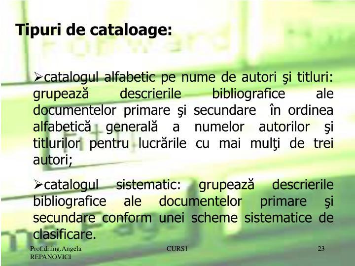 Tipuri de cataloage:
