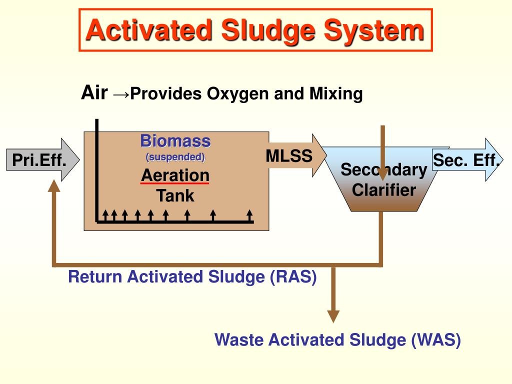 PPT - ACTIVATED SLUDGE PROCESS PowerPoint Presentation - ID:3654392