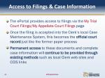access to filings case information