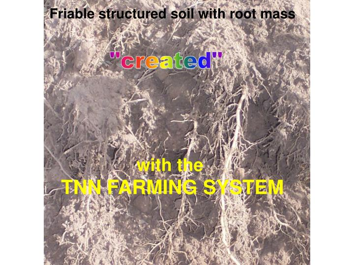 Friable structured soil with root mass